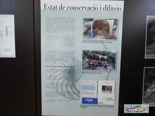 expo carta 060